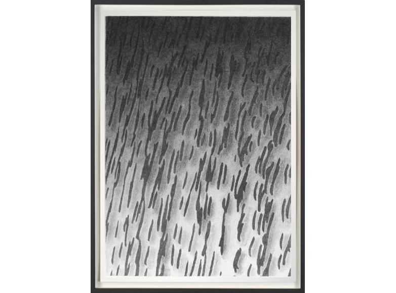 580-2012-Rain-4-TH1